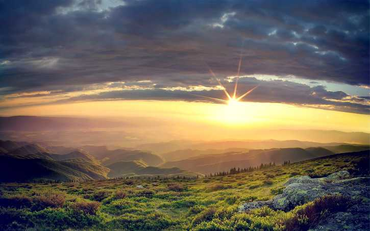 Salmos 119:16 Firmes en Sus estatutos