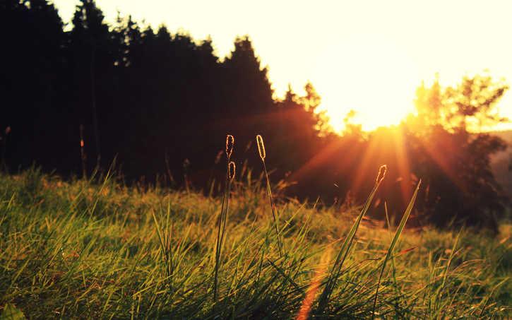 La misericordia está más cercana cuando enmudecemos bajo la vara de Dios 1 | Thomas Brooks