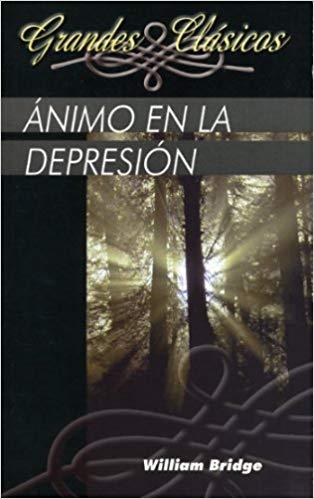 animo-en-la-depresion-trece-mensajes-basados-en-salmo-42