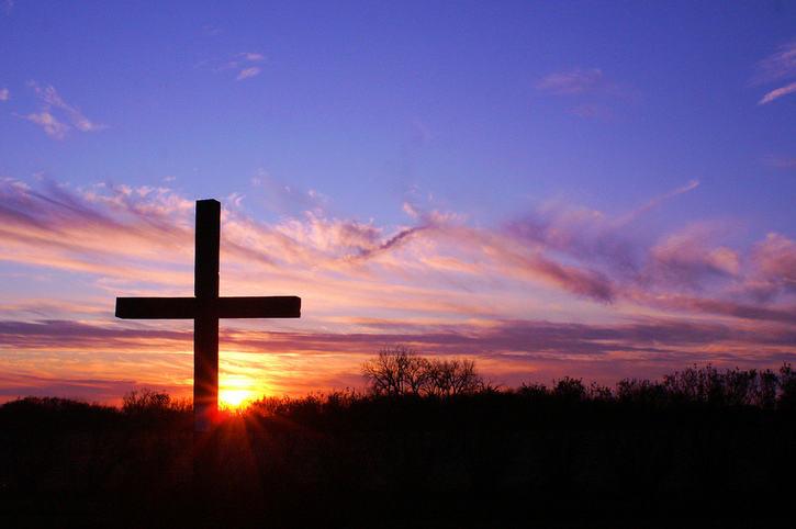 Cristo es precioso en las aflicciones 2 | Timothy Rogers