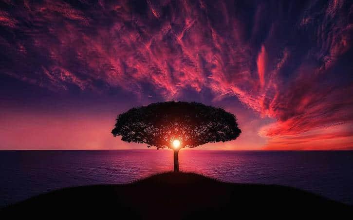 La justificación de Dios | Octavius Winslow