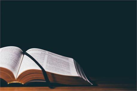 Cómo leer las Escrituras | Octavius Winslow