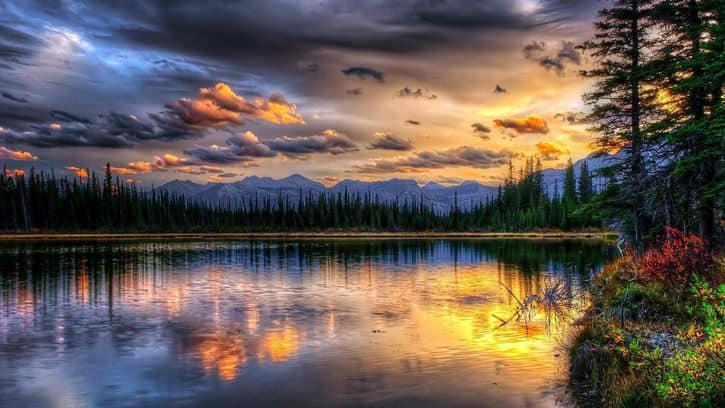 La voluntad de Dios y la santidad | Octavius Winslow